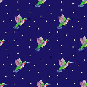 Hummingbirds  blue