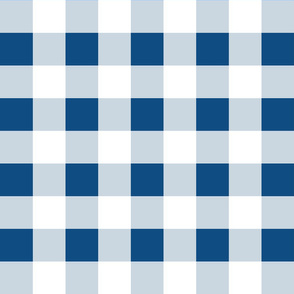 Gingham ~ Toujours Blue and White