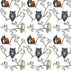 Aww Owls (white)