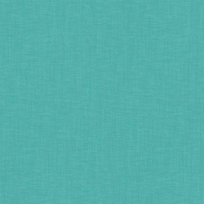 goose turquoise linen