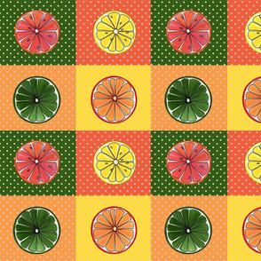 Citrus-pop-art