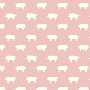 white pigs pink
