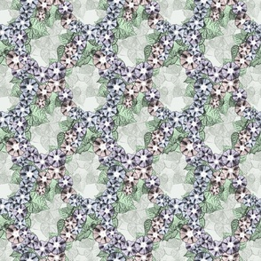 Floral portrait Morning Glory lattice coordinate