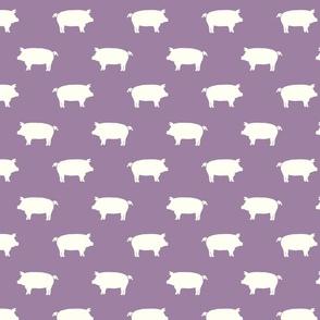 Pigs purple