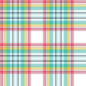 "rainbow tartan style 1 with 4"" repeat - goes with it's my birthday"