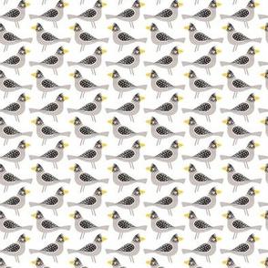 Grey Bird (small)