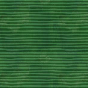 Dragon fire stripe coordinate green horizontal