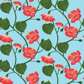 Flor de Maga -  Sky blue