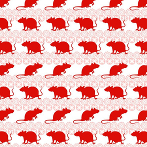 Chinese lunar new year of a rat