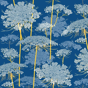Queen Annes Lace  | Blue + Yellow