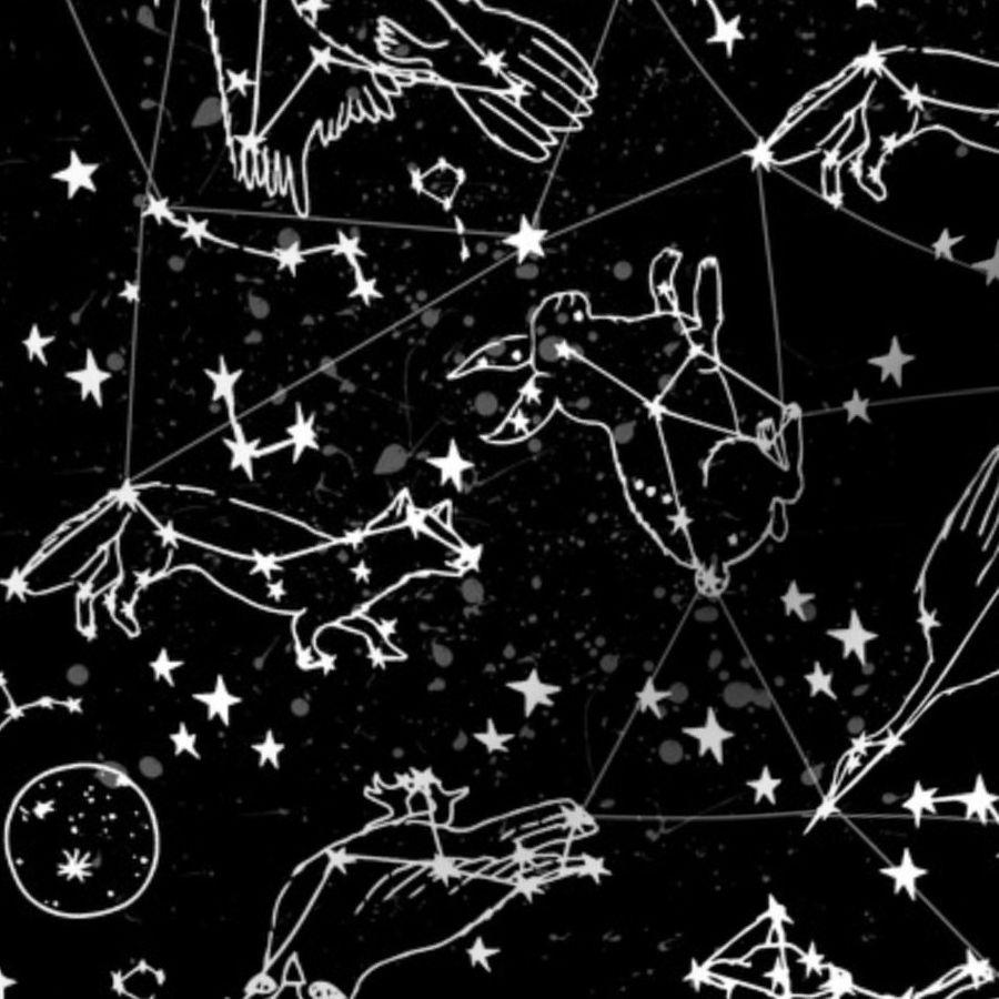 Constellations black and white stars kids nursery baby animals night time sky dreams