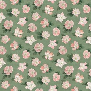 Small Briar Rose Floral Sage