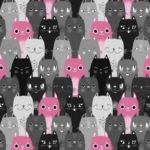 Catpalooza pink