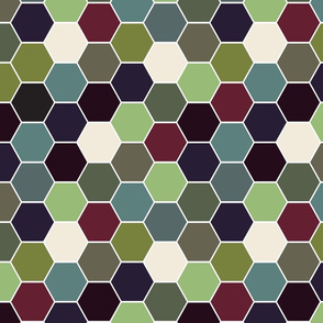 Succulent_hexagon_150dpi_3200px