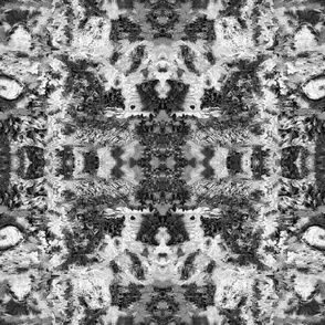 Black White Gray Abstract Painterly