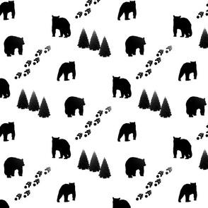 Black Bears Wilderness