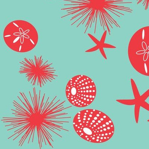 Sea urchins - large print