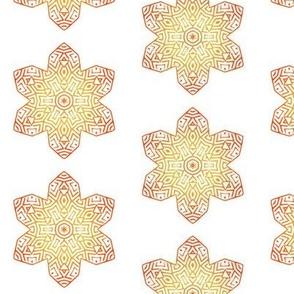 Orange Flower like a Star