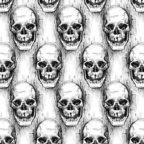 Pencily Doodle Skull 1