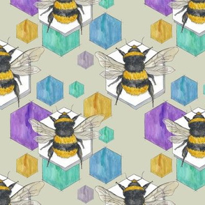 Big Bees with Hexes