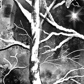 Winter Forest Night Black and White