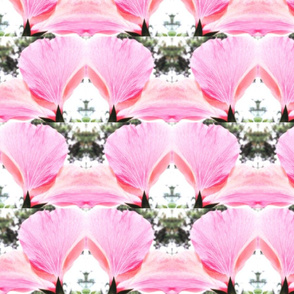 Pink Petal Shapes