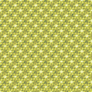 floral_star_avocado-citron