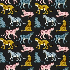 Pastel Cheetahs on Black -small by Heather Anderson