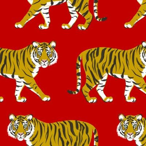 Tiger Parade - Ochre on Red by Heather Anderson