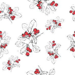 Hawthorn Red White