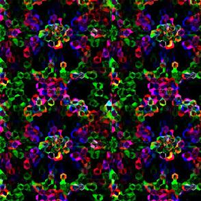 piece_of_fractal_star-ed-ed-ed-ed-ed-ed
