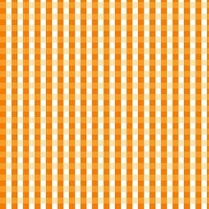 Orange Citrus Gingham