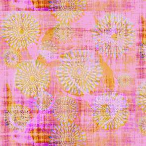 Checkered Chrysanthemum