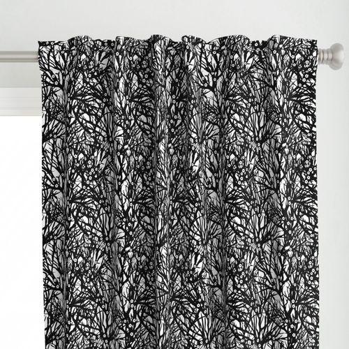 Black and white challenge- Almond Blossoms jezpokili.com