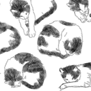Sleeping Cat - digital watercolor sketches