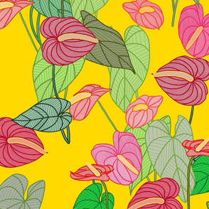 Red Anthurium Color Bright Yellow
