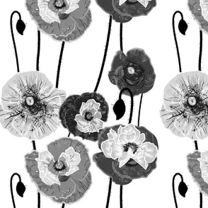 Painterly Poppies (Black&White)