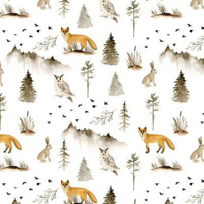 Northern forest, Foxes, owls, rabbits