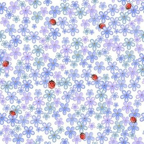ladybugs and forget-me-not flowers