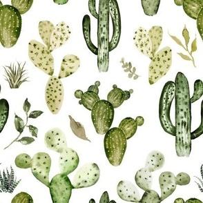 Wild West Cactus // White