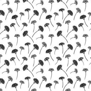 Sedum Flowers Small Black and White