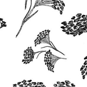 Large Painted Winter Sedum Flowers