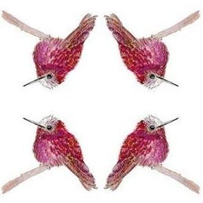 Snowcap Hummingbird Beauty