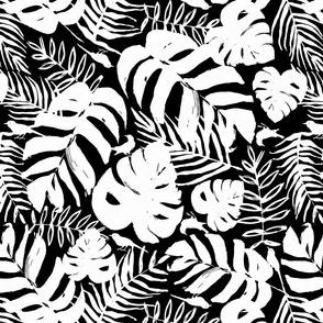 Palms Leaves - Black & White