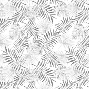 PALMS IN SILVERS