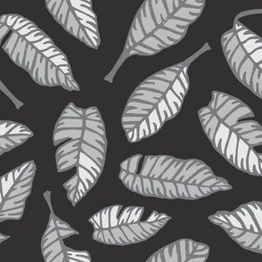 Black and White Calathea Striped Leaves from UnBlink Studio by Jackie Tahara