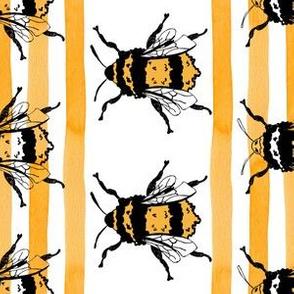 Yellow Bee Stripes