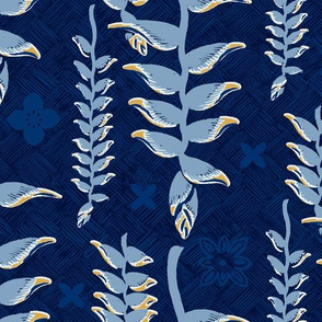 Heliconia Rarotonga Blue 1a