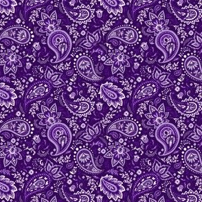 Purple Soma Paisley