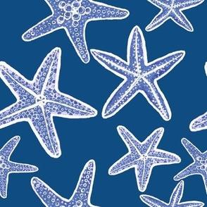 starfish, classic blue